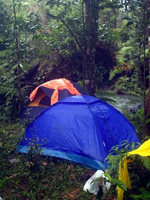 hiking-tents-in-wilderness-area